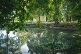 Rybníček u kaple na Těšíně